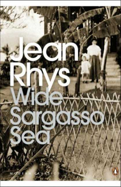 antoinette wide sargasso sea This paper examines the identity crisis experienced by antoinette in jean rhys' wide sargasso sea (1966) from a predominantly soci-psychological perspective.